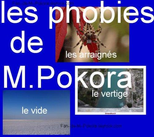 Les Phobies de Mathieu Tota