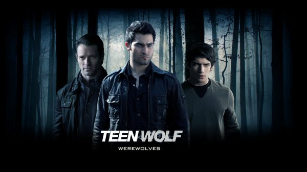 http://about-teenwolf.skyrock.com/