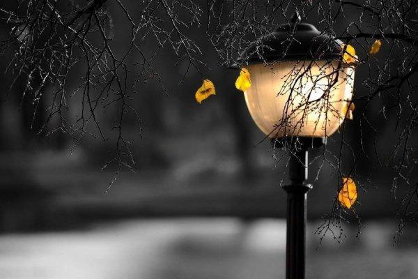 C'est la nuit qu'il et beau de croire en la lumière.