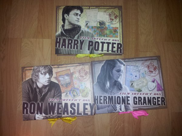 Boite de Collection Harry Ron et Hermione