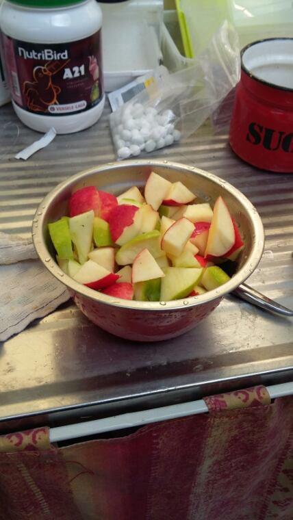 Petite pomme pour mes titis