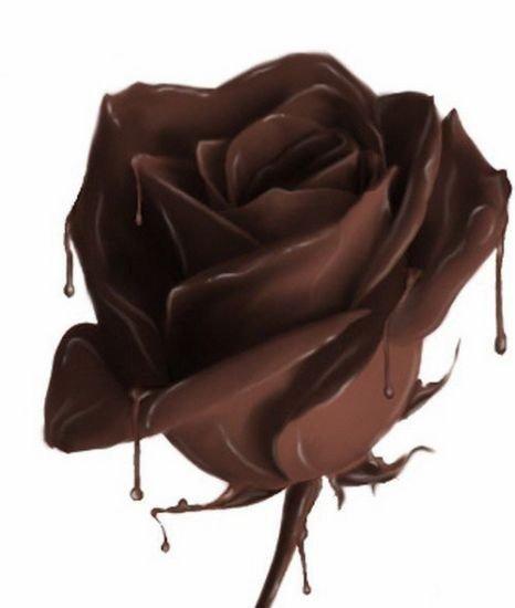 humm le chocolat