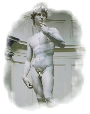 [Sculpture n°1] : Le David de Michel-Ange