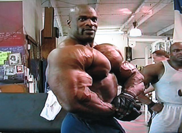 Liens utile: Apprendre le Bodybuilding. 05