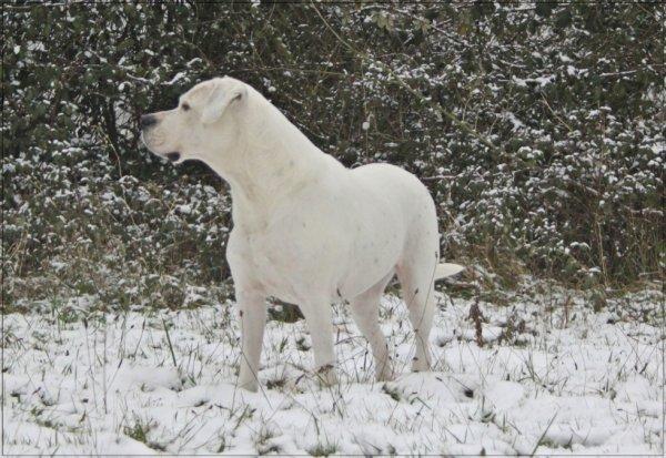 Val tess £ co dans la neige !!