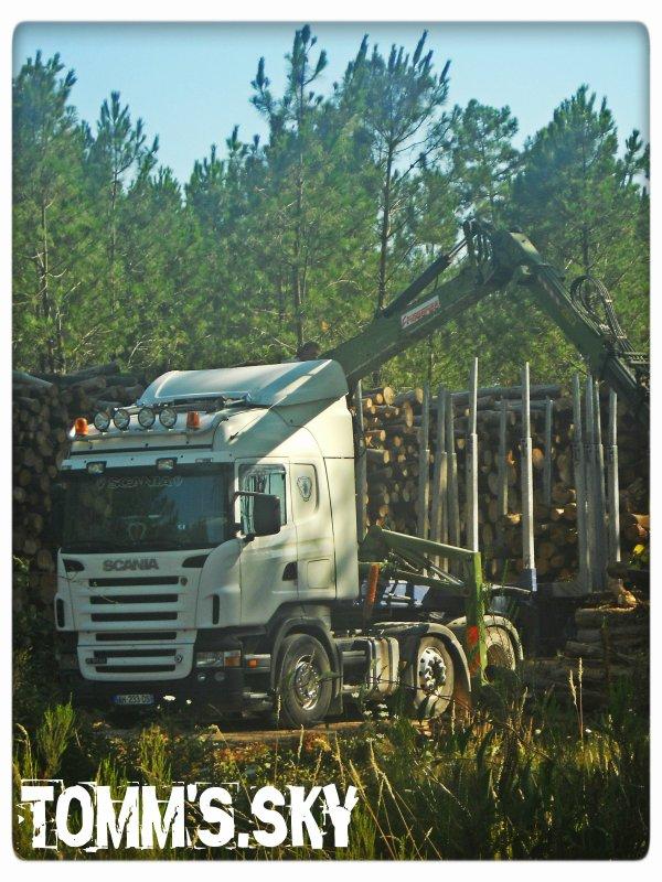 Scania (31).