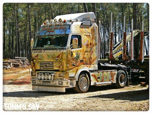 Transports RD Bois (40).