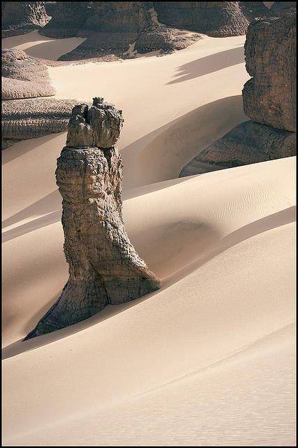 la nature du désert