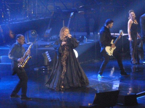 Concert de Céline Dion