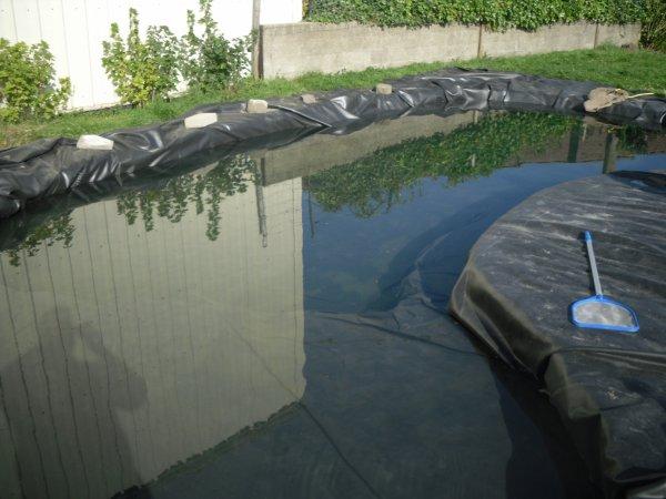 De retour à la maison... L'étang rempli, et j'en profite avant d'y mettre les poissons...