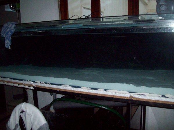 Remplissage de l'aqua... et la tête de bouf-da qui flotte, on va remédier à ce problème...