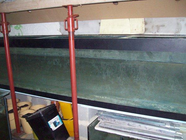 Petite photo de mon aqua de 2000 Litres avant son nettoyage et sa mise en route cette semaine ;-)