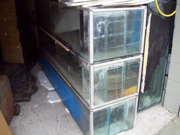 Nouveaux aquariums que l'on m'a donné. Un rack 3 étages, une cuve de 800 Litres et 3 aquas de 500 Litres...