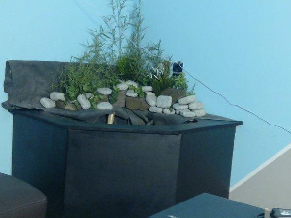 Le nouveau bac à tortues de mon petit frère ;-)