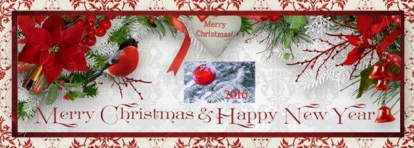 Bonnes fêtes de fin d'année 2015