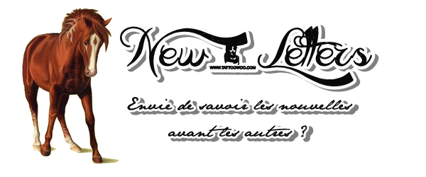 « New-Letters »
