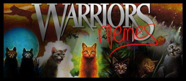 Warriors Memes !