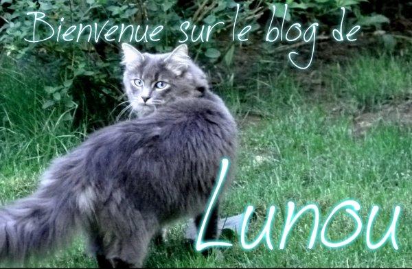 pour Reflet-de-Lune-LGDC