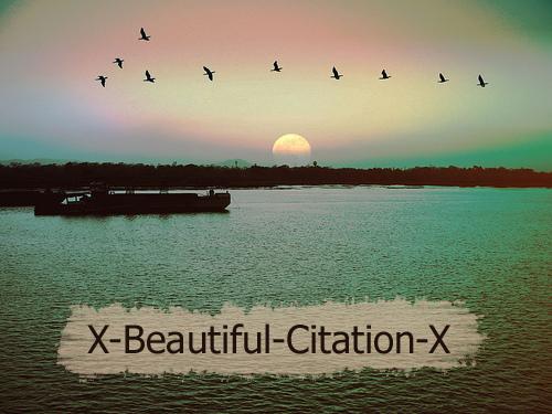 Bienvenue sur X-Beautiful-Citation-X