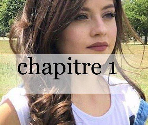 chapitre 1 partie 1