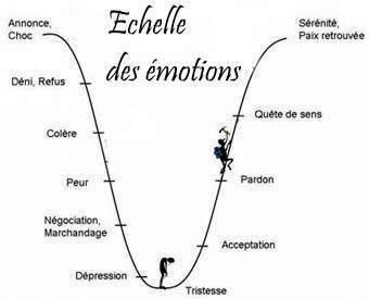 Échelle des émotions
