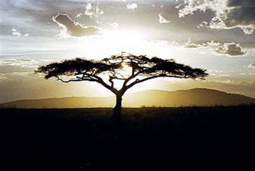 TANZANIA, MOZAMBIQUE..., CARTAS I y II, by Pepe Arribas