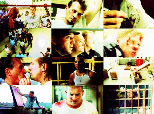 ___TV Meme___        Un des épisodes que j'ai le plus apprécié, est le 1.06 de Prison Break. Le fameux épisode de l' émeute qui se déroule en 2 parties c'est le 1er épisode que j'ai vu de  la série et je n'ai pas été  déçue