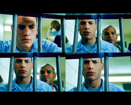 ___TV Meme___        Le  Pilot de  Prison Break  est très accrocheur et nous fait vite rentrer dans l'ambiance de la série bref tout ce que j'aime !