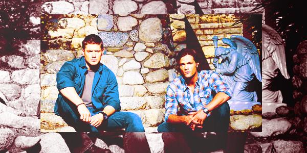 ___TV Meme___        Supernatural est mon  obsession du moment. J'avais arrêté vers   la fin de la saison 2 et j'ai voulu reprendre cet été. Aujourd'hui j'en suis à la saison 5 et je ne suis pas déçue d'avoir repris.