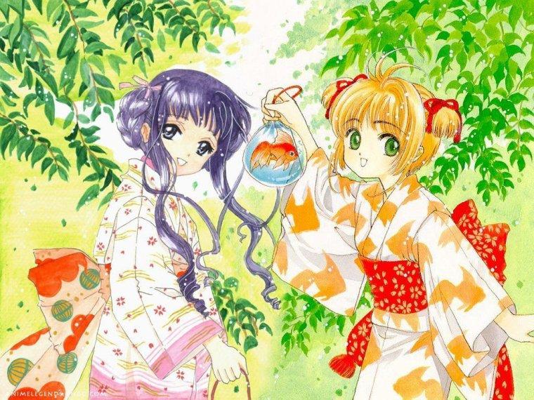 Théorie sur Card Captor Sakura : Sakura et Tomoyo, des Soeurs ?