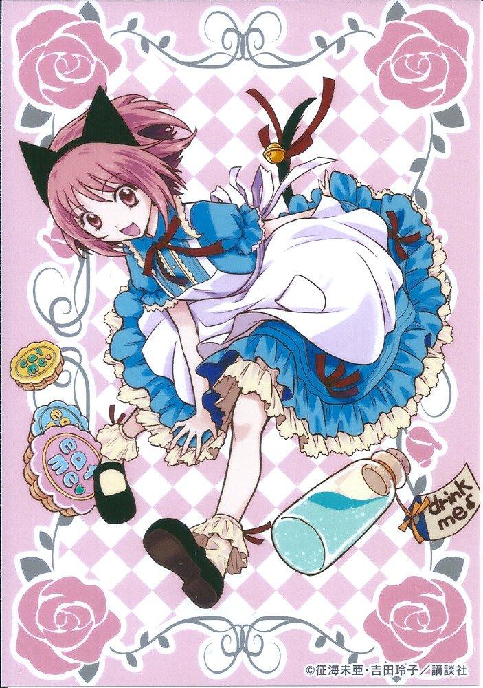 Le Nouvel Anime de Tokyo Mew Mew Annoncé ^o^ ! Tokyo Mew Mew Nya ~ ♡ !