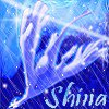 Shina-coeur-de-glace