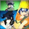 Naruto flow go