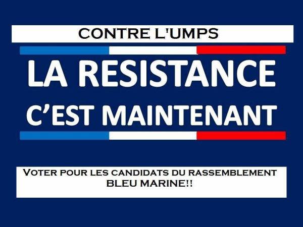 La Résistance c'est avec le Rassemblement bleu Marine !!!