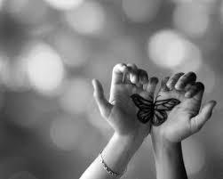 Un papillon ...