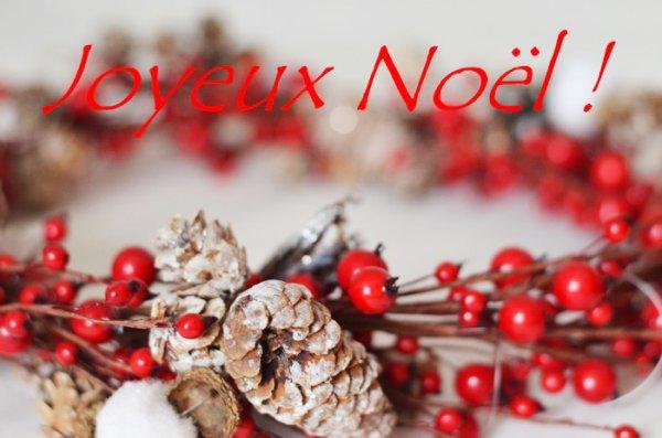 Joyeux Noël & Bonnes fêtes de fin d'année !