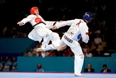 L 39 histoire du taekwondo les arts martiaux for Origine des arts martiaux