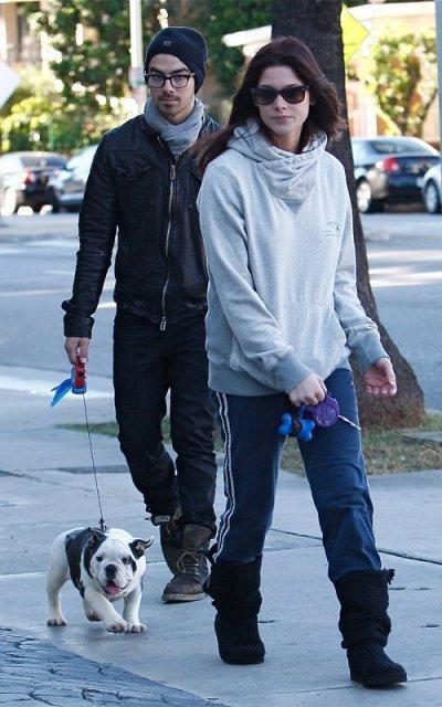 26 novembre 2010 Joe et Ashley se proménent dans Los Angeles avec marlow et leur nouvel chien