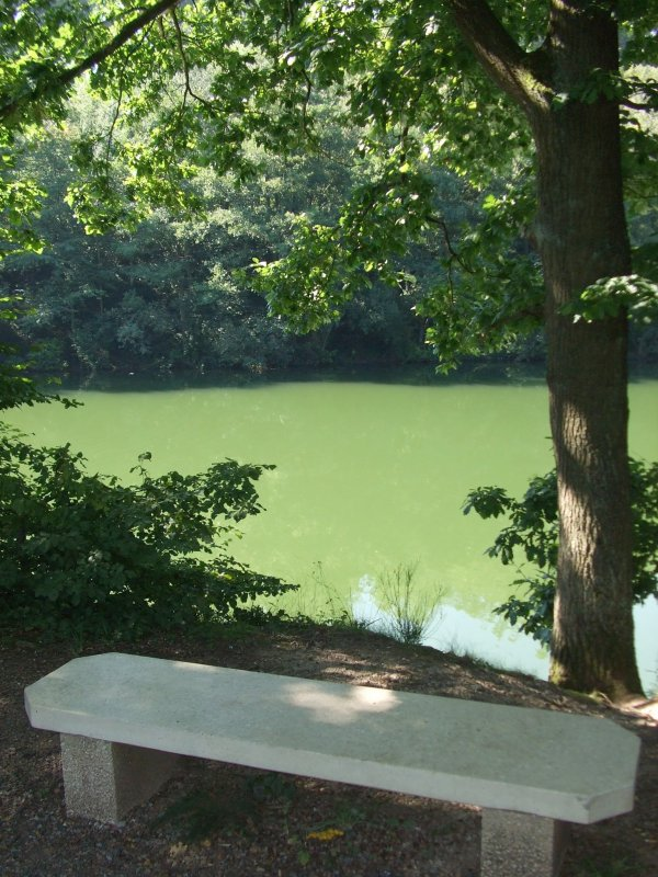 Le lac de Beugin. 1.