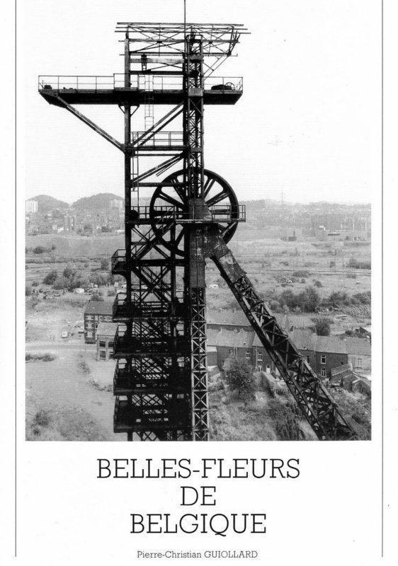 Belles-fleurs de Belgique de Pierre-Christian Guiollard