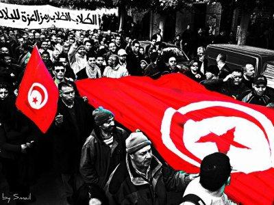 Chui Fier D'etre Tunisien Revolutionnaire