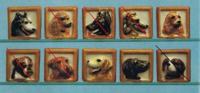 chiens tableaux