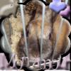 xMoustik-Fripon