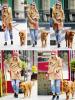 26.05.2013 : Emma Stone, bonnet sur la tête, promenait son chien Ren dans les rues de New-York City.
