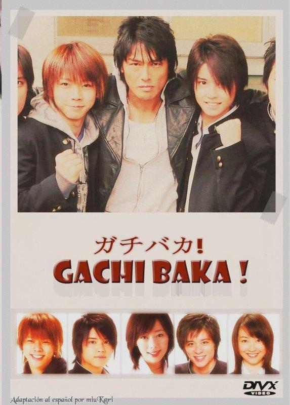 ♥ Gachi Baka ! ♥