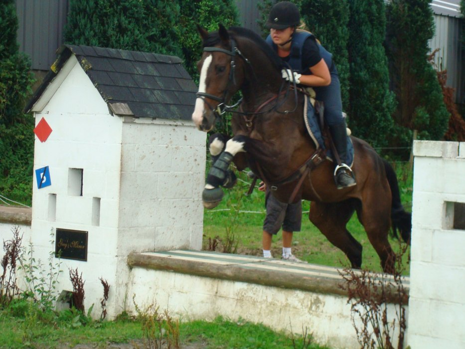 Ma passion...mes amours...