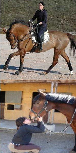 L'équitation un SPORT ou une RELATION ?