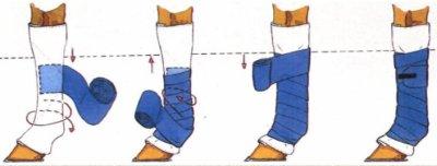 Comment mettre des bandes de polo ou des bandes de repos.