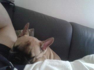 petite sieste avec papoune