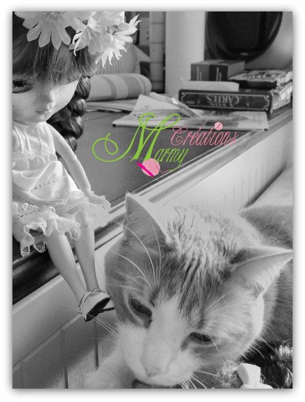 Petite douceur entre Rosie et Figaro